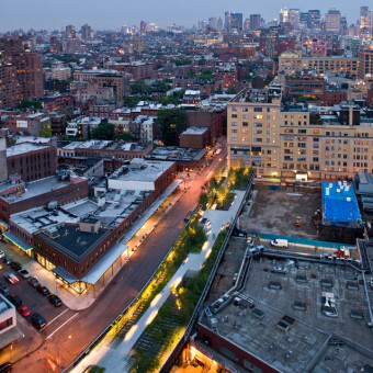 High Line: The Inside Story of NYC's Park in the Sky Book